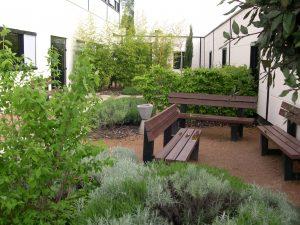 Création espaces verts